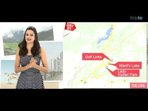 Shillong tour: 2-day itinerary in 60 seconds