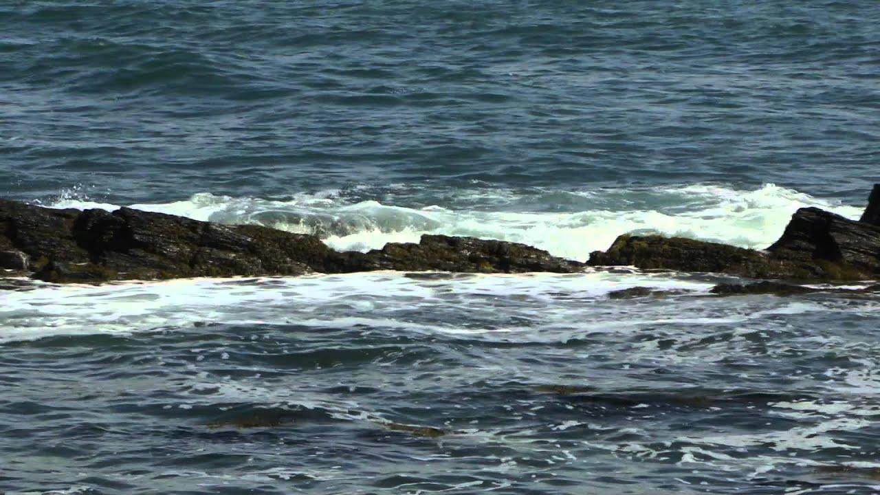 Fish newport rhode island september ri 2011 youtube for Ri fishing regulations
