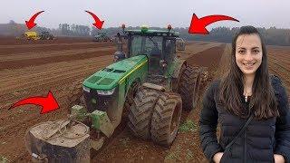 Ekstremalne Wykopki 2019 ☆6 TRAKTORÓW NA POLU! ☆500 Hektarów Ziemniaków!.