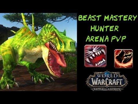 BEAST MASTERY HUNTER Arena 2800+ WoW PvP