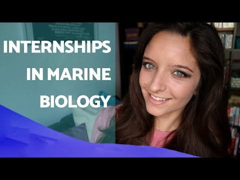INTERNSHIPS in marine biology - My experiences