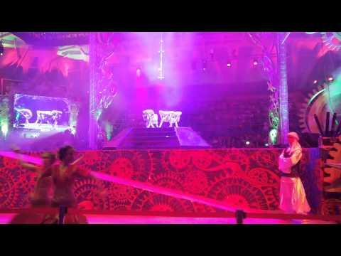 Видео: Шоу в Лужниках