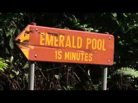 emerald pool and  jaco waterfalls, Dominica 2015
