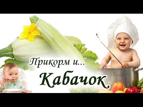 ПРИКОРМ и КАБАЧОК – как первый раз приготовить для ребенка, варить пюре для детей