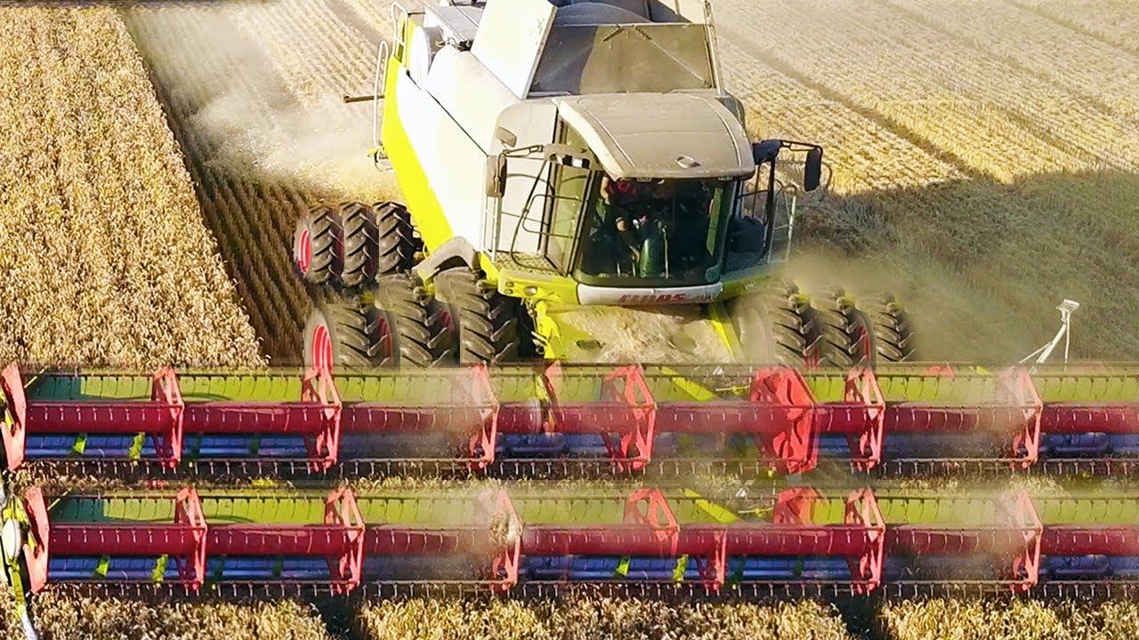 Уборка пшеницы по ВЗРОСЛОМУ! Комбайны CLAAS 760 | 670 | 560 | 440