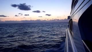 """Ship of Fools"" Trailer 2012"