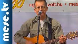 Huzella Péter: Vonat (dal, koncert részlet) | MESE TV