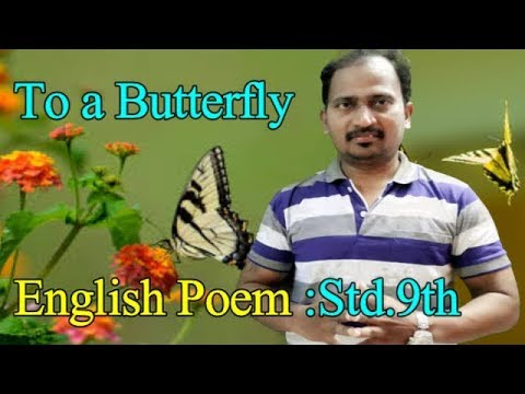 To a Butterfly : ENGLISH POEM :STD.9TH : NEW SYLLABUS : THIRD LANGUAGE