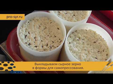 Как приготовить вкуснейший сыр качотта в домашней мини-сыроварне - пошаговый рецепт!
