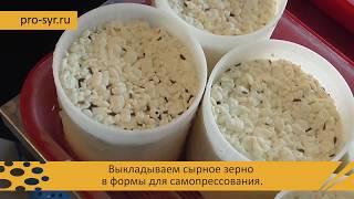 видео: Как приготовить вкуснейший сыр качотта в домашней мини-сыроварне - пошаговый рецепт!