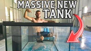 massive-new-tank-for-massive-new-fish-gallery