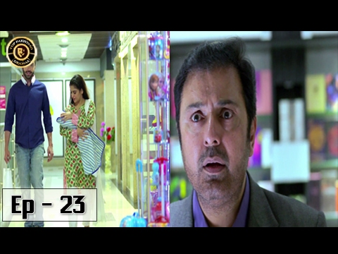 Mere Humnawa Episode - 23 - 18th February 2017 - ARY Digital Top Pakistani Dramas