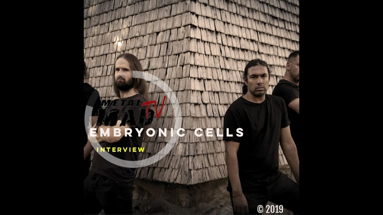 Interview EMBRYONIC CELLS