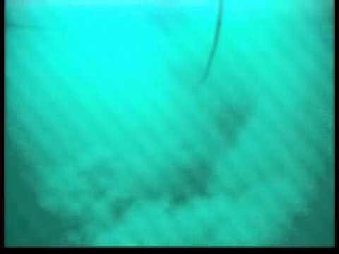Seafloor Survey using Underwater Video Camera-Forward