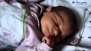 Baixar Isabella Retrospectiva Nascimento