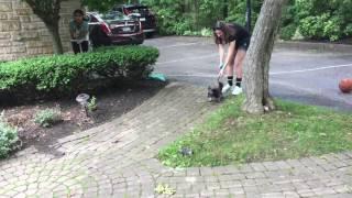 Waterproof sock commercial clips