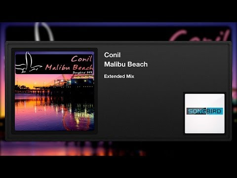 Conil - Malibu Beach