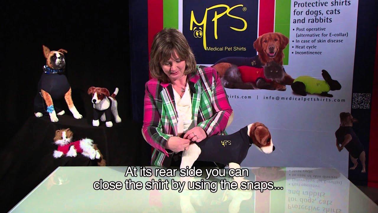 2e0de8e7fce0 Medical Pet Shirts International Instruction video MPS Medical Pet Shirt NL  EN subtitled