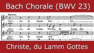 Bach - Christe, du Lamm Gottes (Chorale)