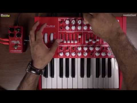 No talk, just sound - Arturia MiniBrute RED