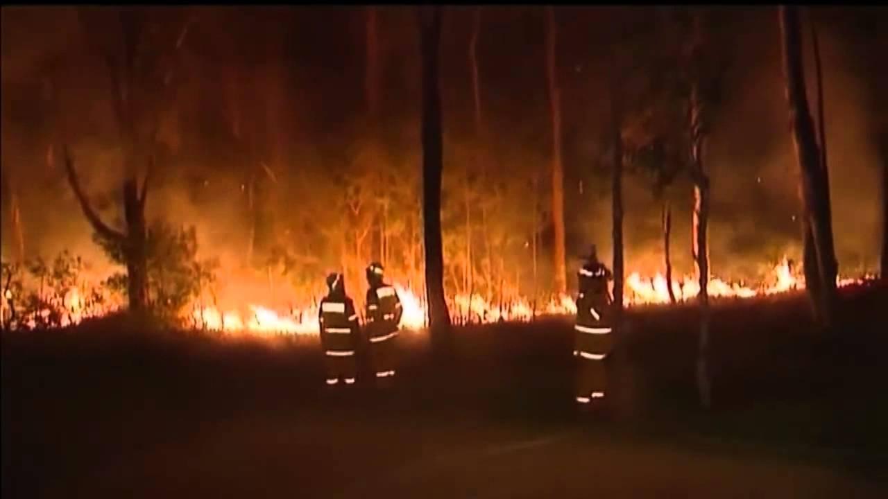 Skogsbrander nara sydney
