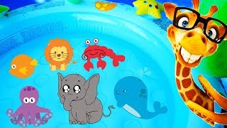 Learn Colors with Animals & Learn Wild Animals, Farm Animals & Sea Animals with Toy Animals for Kids
