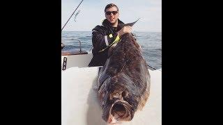 Ловля палтуса в Норвегии. Эффективный способ! 20 палтусов за 5 дней! Halibut fishing.