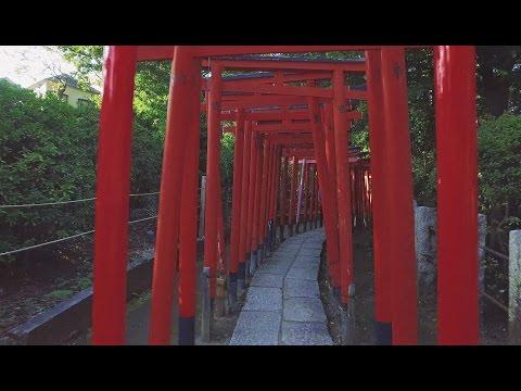 Nezu Shrine | Bunkyo-ku, Tokyo【東京・根津神社】 4K