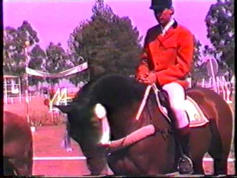 1986 Zambia   Kitwe, Derby, CHL, part 4, Jumpoff, Thierry J, Next Event, Julie F, Open, VHS48