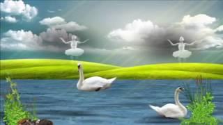 клип  Белая лебедь