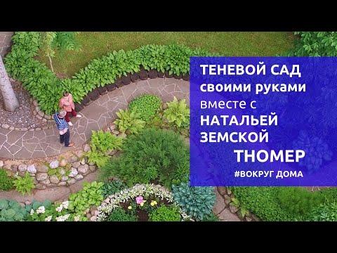 Теневой сад своими руками в Подмосковье | #ВокругДома