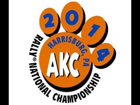 AKC National Rally Championship 2014 Beta Test