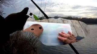 Поведение рыбы поздней осенью и зимой Где искать Хищника Приманки для зимы поздней осени