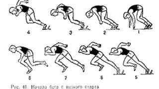 Чемпионат Барнаула по легкой атлетике