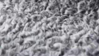 видео Куртка из каракульчи с отделкой из баргузинского с