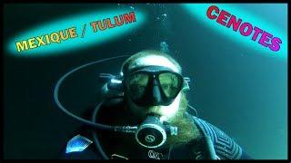 Plongées dans les cénotes du Mexique!!!!