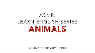 ASMR: Learn English - Animals (American English accent, ASMR, soft talk & whispering))