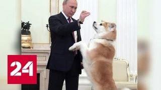 "Путин появился перед журналистами под охраной ""строгой собаки"""