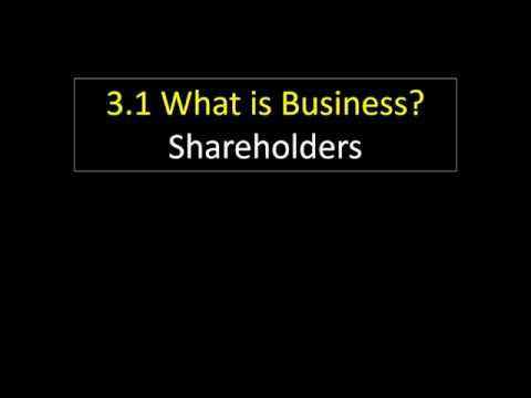 3.1 15 Shareholders