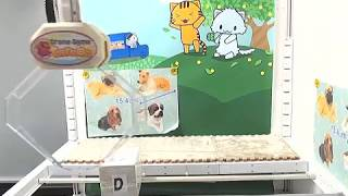 Toreba Online Crane Game Polystone Real Dog Figure Big D #3 in 1 Try from Starting Position