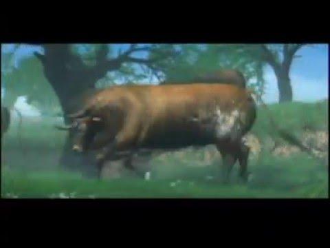 Promo de Torero. Arte y pasión en la arena (Game Pro, 2002)