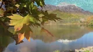 信州戸隠鏡池の紅葉(4K)