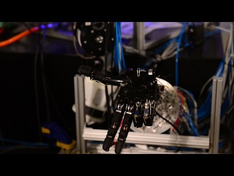 Watch a Robot Learn on Its Own