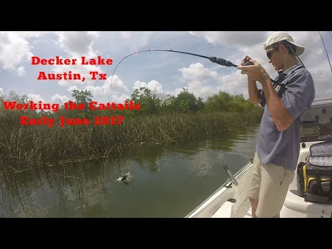 Bass Fishing Decker Lake, Austin, Texas June 2017