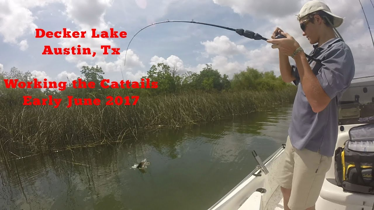 Bass Fishing Decker Lake Austin Texas June 2017 Youtube