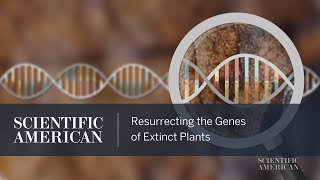 Resurrecting the Genes of Extinct Plants