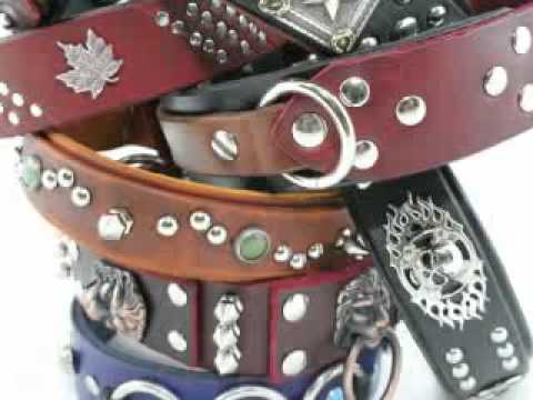 Cerberus Designs Custom Leather Dog Collars