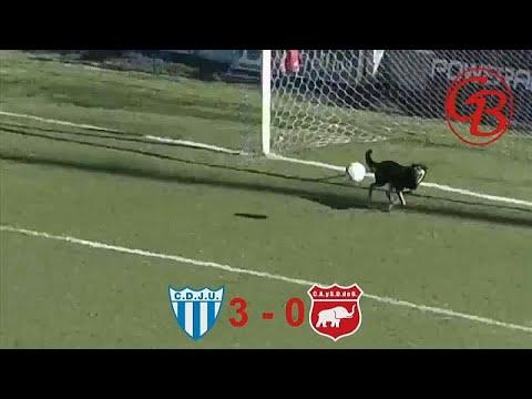 فيديو: في الأرجنتين يتقن الجميع كرة القدم...حتّى الكلاب! …  - 08:53-2018 / 12 / 5