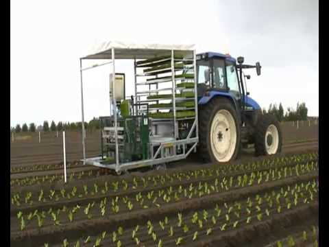 Fully automatic planting machine - 4 row vegetable transplanter
