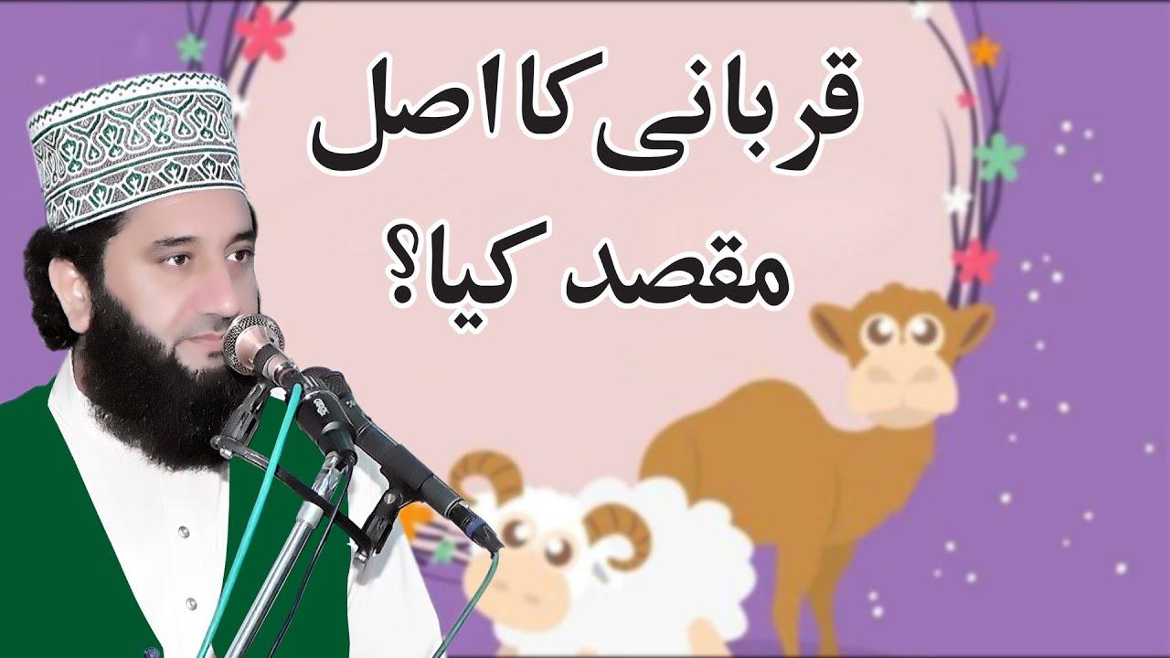 Download Qurbani Ka Asal Maqsad   Syed Faiz ul Hassan Shah   Official   03004740595